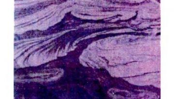 Палеогеоморфологическая и литолого-фациальная характеристики основных сейсмофациальных комплексов неокома севера Западной Сибири как основа их геологического моделирования.