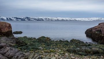 Prospects of Barents Sea basin